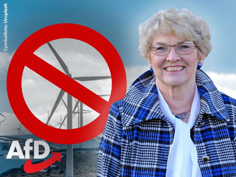 gudrun petzold windkraft windenergie windkraft windenergieanlagen käferberg bei oschatz