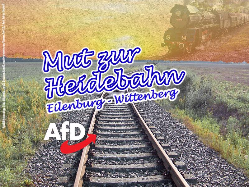 heidebahn bad düben nordsachsen afd gudrun petzold rené bochmann